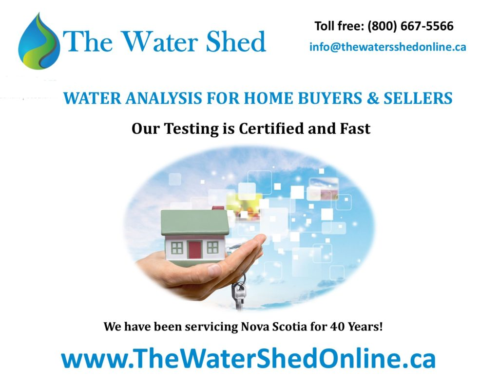 TWS Ad 4 Home Buying